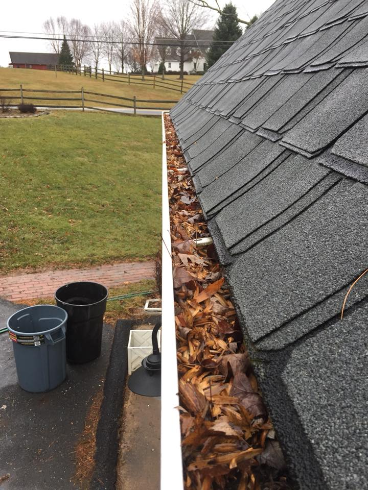 Top Rated Seattle Wa Roof Cleaning Near Me